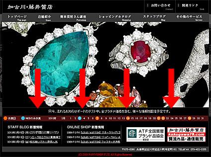 pawn-fujii2010.jpg