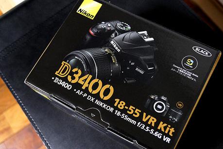 P1040631.jpg