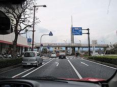 IMG_1105.jpg